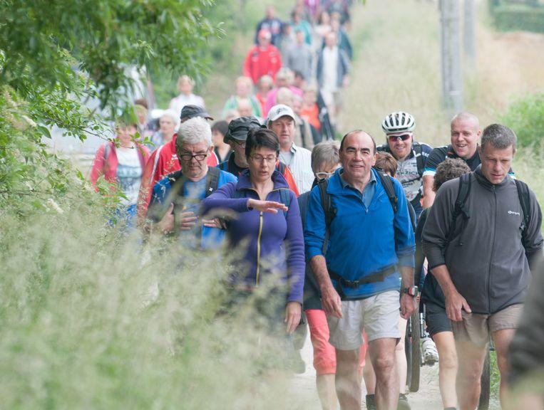 Wandelclub Hanse De Krijger laat deelnemers zaterdag kiezen uit zes verschillende tochten