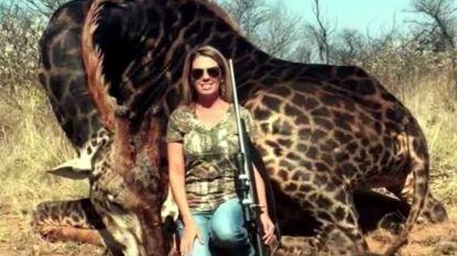 """""""Apetrots dat ze 6.000 wilde dieren afschoten"""""""