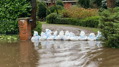 """Worden gemeentelijke hemelwaterplannen binnenkort verplicht? """"Te weinig gemeenten maken ruimte voor hemelwater"""""""