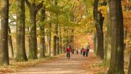 Landlopersjogging in Wortel op 30 augustus
