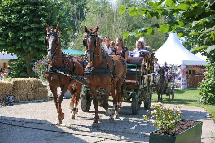 Op Landgoed Mariënwaerdt wordt tijdens de Landgoedfair van alles georganiseerd.