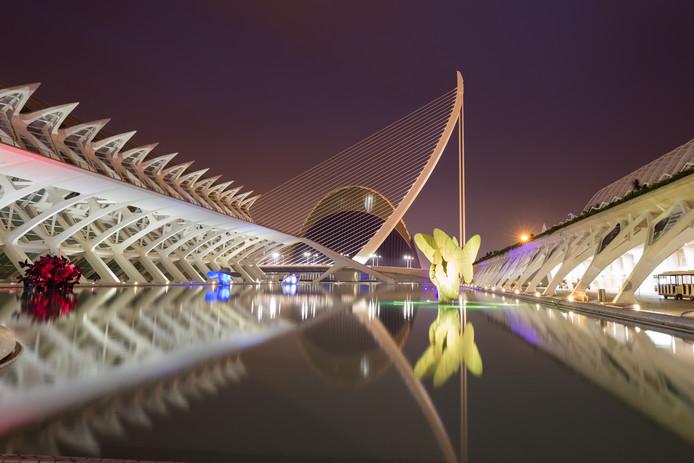 Jeanine van der Vleuten uit Valkenswaard maakte deze foto in Valencia van 'Ciudad de las Artes y las Ciencias',  het toonaangevende bouwwerk van de wereldberoemde architect Santiago Calatrava.