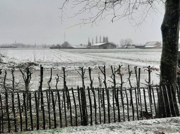 Een winters tafereel van Evelien Vanhollebeke