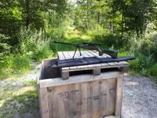 Man schiet in Kuinderbos met luchtdrukwapen op blikjes: boete