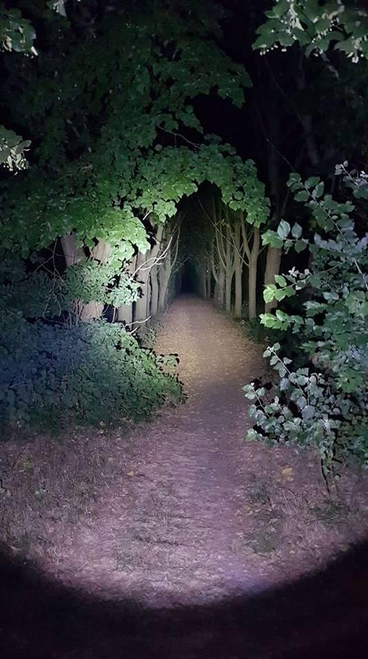 De vrouw werd in een donker Mastbos achtergelaten.
