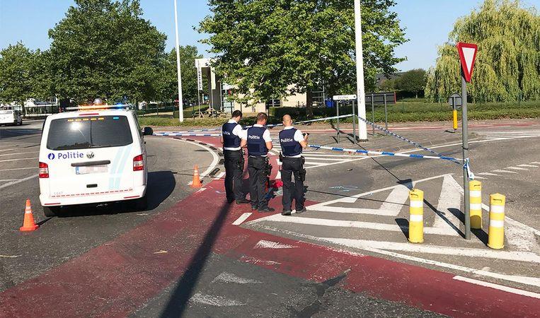 Bernise reed op het rode fietspad op de drukke rotonde.