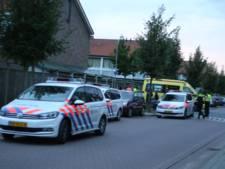Vader en zoon vast voor vechtpartij in Den Bosch; families hadden eerder al ruzie
