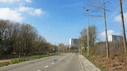 Tijdelijk eenrichtingsverkeer in Molenbeekdal in Zellik