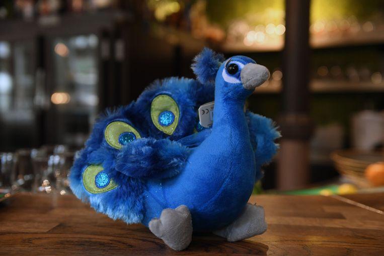 Voor 14,50 euro kan je in de nieuwe Blauwe Schuit zelfs een knuffelpauw kopen.