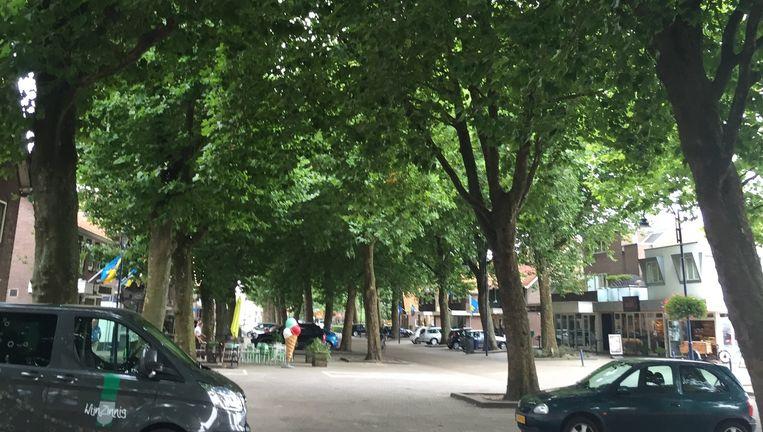 De plantanen in Gendt volgen de hele Dorpstraat Beeld .