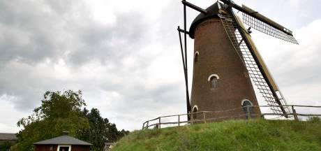 'Historisch correcte hut' in Luyksgestel krijgt bijzonder bezoek