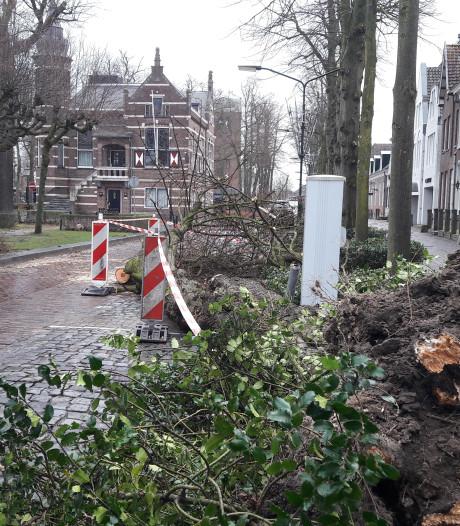 Groen kost poen in Oisterwijk: 1,2 ton moet bijgepast worden
