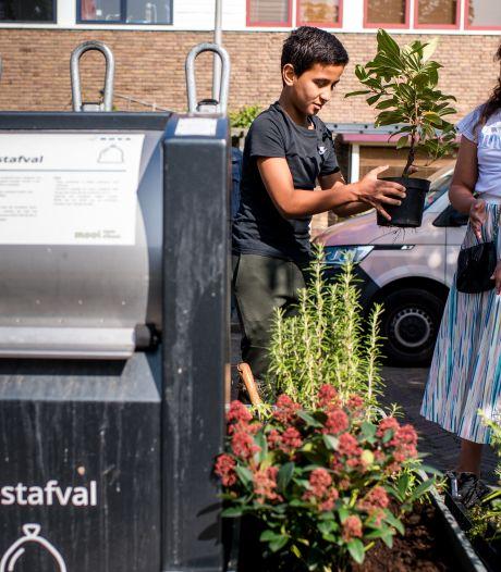 Containertuintjes: dé oplossing voor rommel bij afvalbakken én meteen ook een groenere buurt