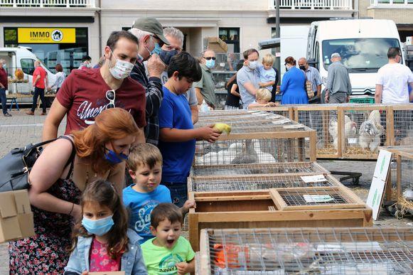 Een archiefbeeld van de dierenmarkt in Mol op 12 juli