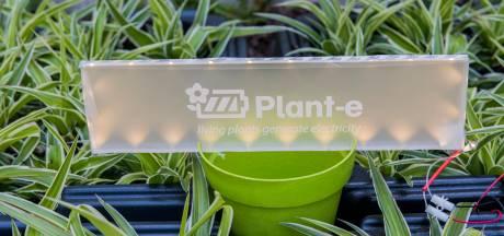 Een accu in je huis en lantaarnpalen branden op planten in Wageningen