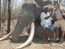Le plus grand éléphant depuis 30 ans tué à la chasse