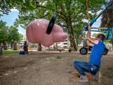Enorm roze varken doemt op in Jan Cunenpark Oss