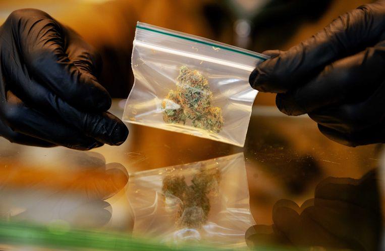 In ons land verkopen wietwinkels legale cannabis waar je niet high van kan worden.