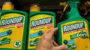 Chemieconcern Bayer publiceert resultaten over kankerrisico van omstreden onkruidverdelger