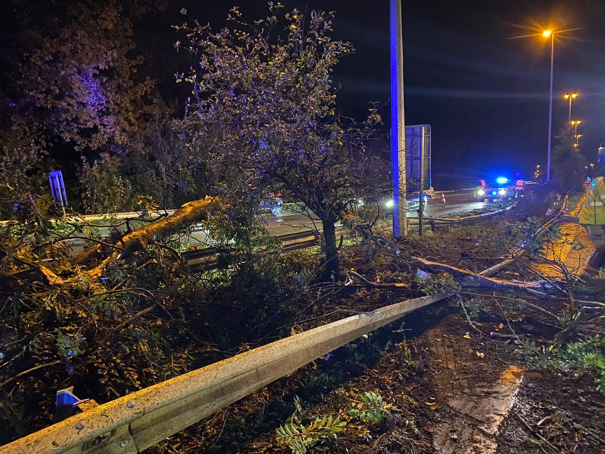 De vangrails, bomen en struiken werden vernield.