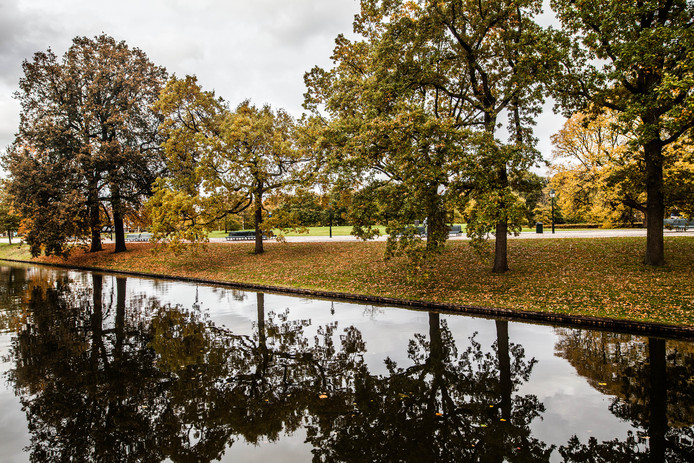 De Koekamp in de herfst. Het groen nabij het Malieveld gaat op de schop.