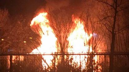 VIDEO. Twee politiewagens in brand gestoken in Mechelen