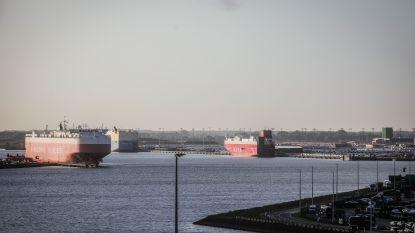 Brexit of niet: haven van Zeebrugge groeit na drie kwartalen met 11 procent