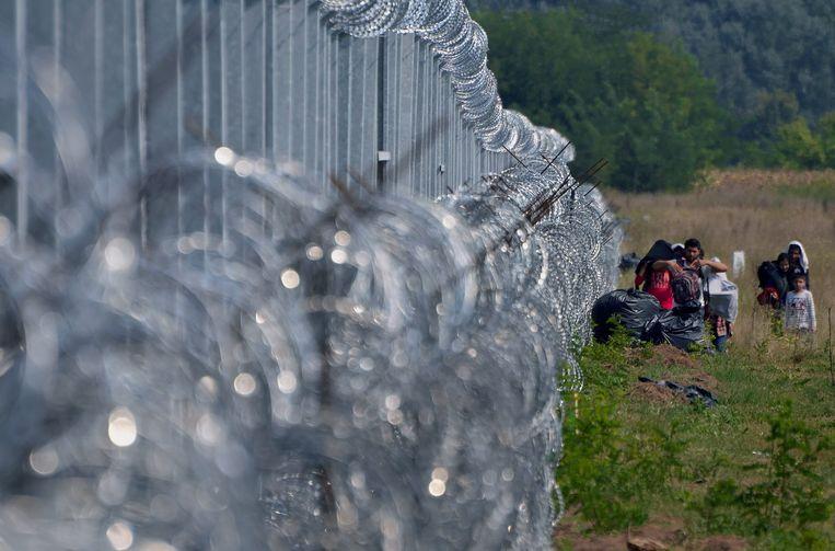 Migranten bij het hek op de grens tussen Servië en Hongarije. Beeld null
