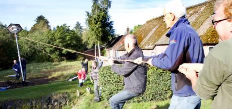 Hoge zwaluwpaal in tuin Kockengen 'Het scheelt een hoop muggen in huis'
