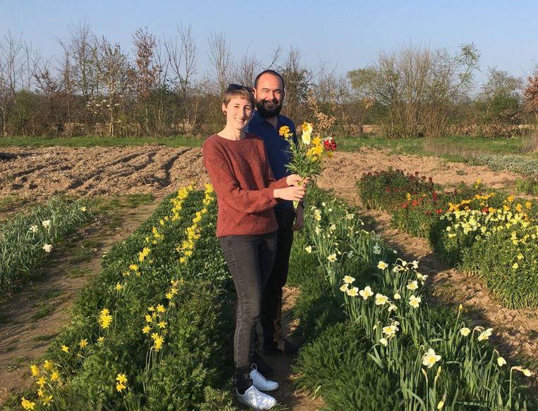 Op de bloemenboerderij kunnen deelnemers elke week zelf een boeket snijbloemen plukken.