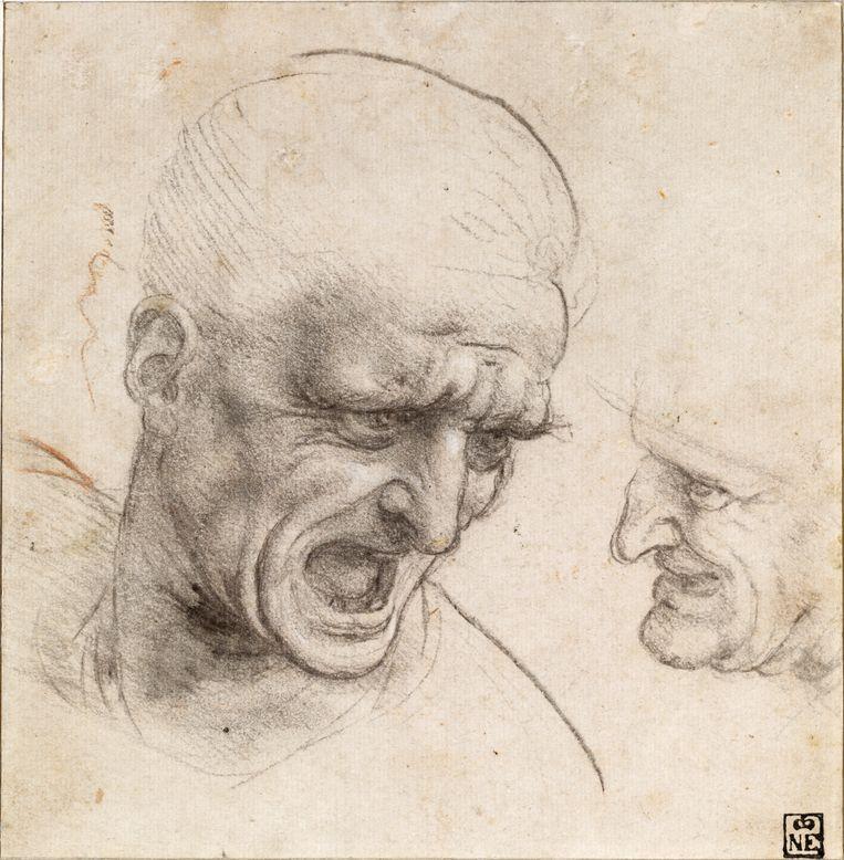 Studie van twee hoofden van krijgslieden (ca. 1503-1504). Leonardo maakte deze studie ter voorbereiding op zijn fresco De Slag bij Anghiari voor de Zaal van de Vijfhonderd in het Palazzo Vecchio in Florence.  Beeld Boedapest, Szépmüvészeti Múzeum