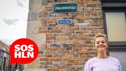 SOS HLN. Zarra wil heel Vlaanderen aan het 'goeiedag zeggen' krijgen (maar heeft nog wat hulp nodig)