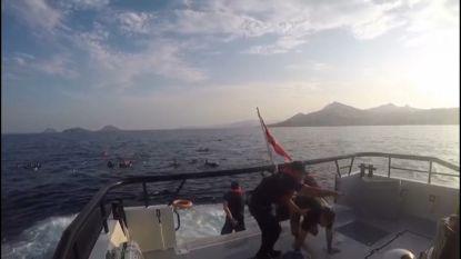Turkse kustwacht filmt redding gekapseisde migranten: minstens twaalf mensen verdronken