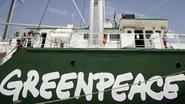 Miljoenenverlies voor Greenpeace door fout medewerker