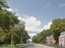 Mogelijk voetgangerstunnel of loopbrug voor Paleis Soestdijk