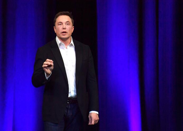 Topman van Tesla, Elon Musk