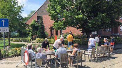 Leuvenaars met groene vingers zetten buurtperkjes in de bloemen