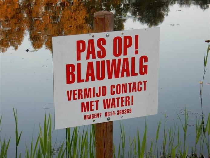 De jongeren in Ruurlo negeerden de borden die waarschuwen voor blauwalg.