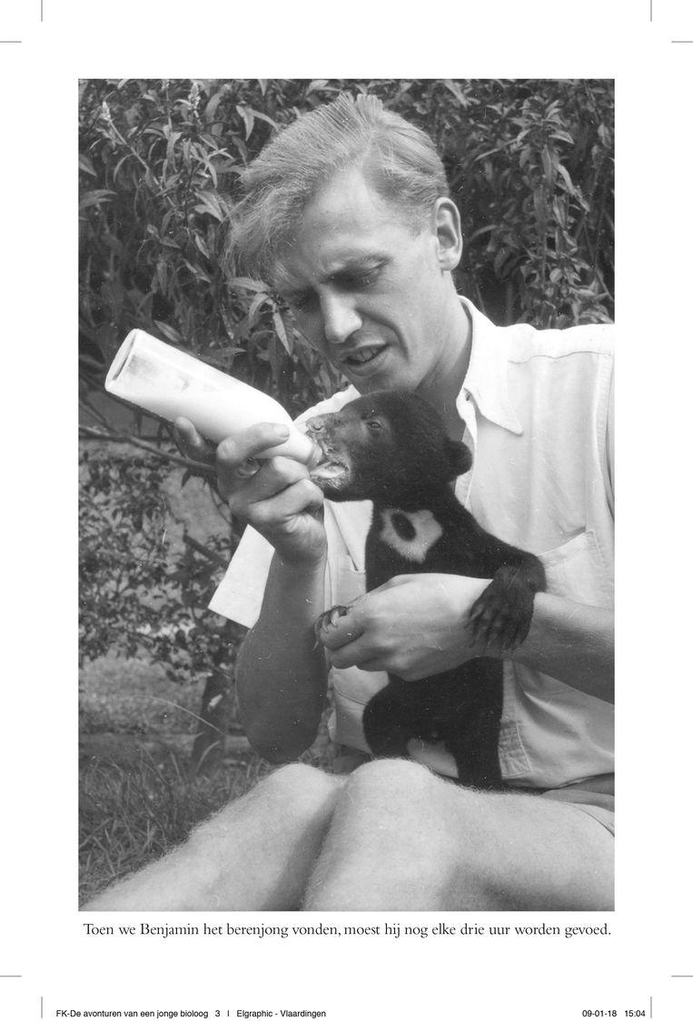 Attenborough voedt een honingbeer, die zijn moeder is kwijtgeraakt, in Indonesië. Beeld x