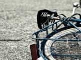 Slachtoffer van fietsendiefstal gaat in Breda achter dief aan, krijgt hulp van omstanders