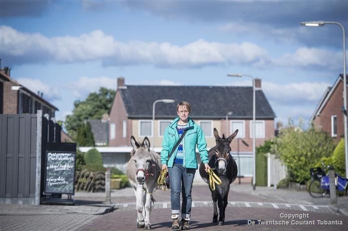 Monique IJsseldijk laat haar ezels Thiemo en Jeffrey uit.
