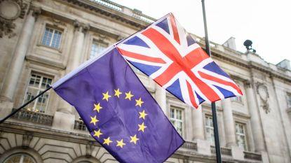 EU waarschuwt bedrijven voor no-dealbrexit