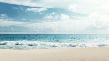 Hoe de zee aan haar geur komt en waarom dat belangrijk is
