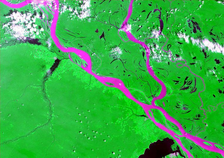 Een satellietbeeld van de Amazone. Beeld Loïc Dutrieux