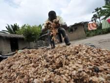 Doetinchemse jongeren naar Equador om cacaoboeren te helpen
