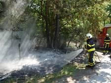 Bosbrand in Loon op Zand onder controle door brandweer