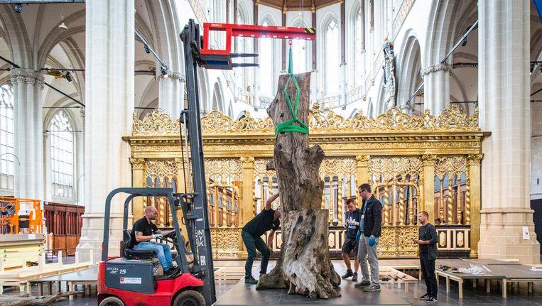 Tree, van kunstenaar Ai Weiwei. Beeld Dingena Mol