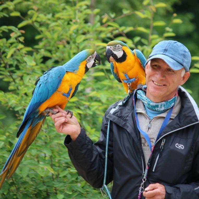 Joseph Verdyck, de eigenaar van de doodgeschoten papegaai Rambo.