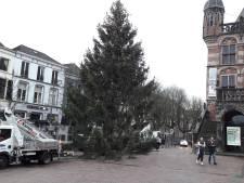 Is Deventer blij met jubileumkerstboom op Brink?
