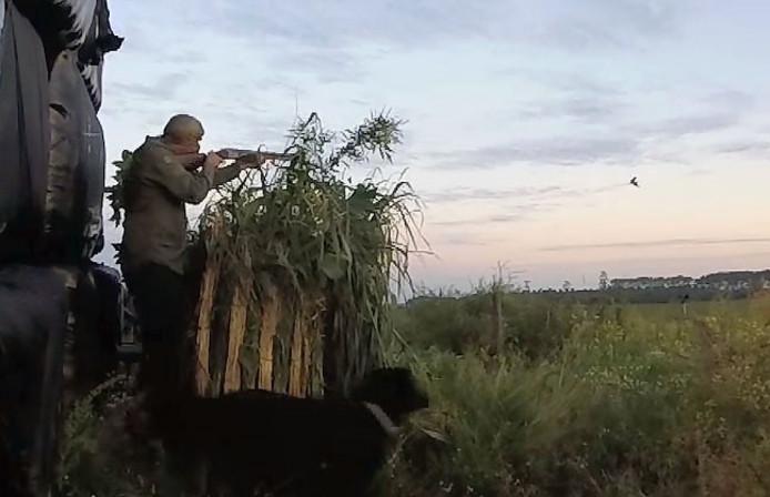 Tok Poortvliet tijdens de jacht met zijn labrador.